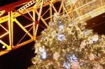 クリスマス東京タワー